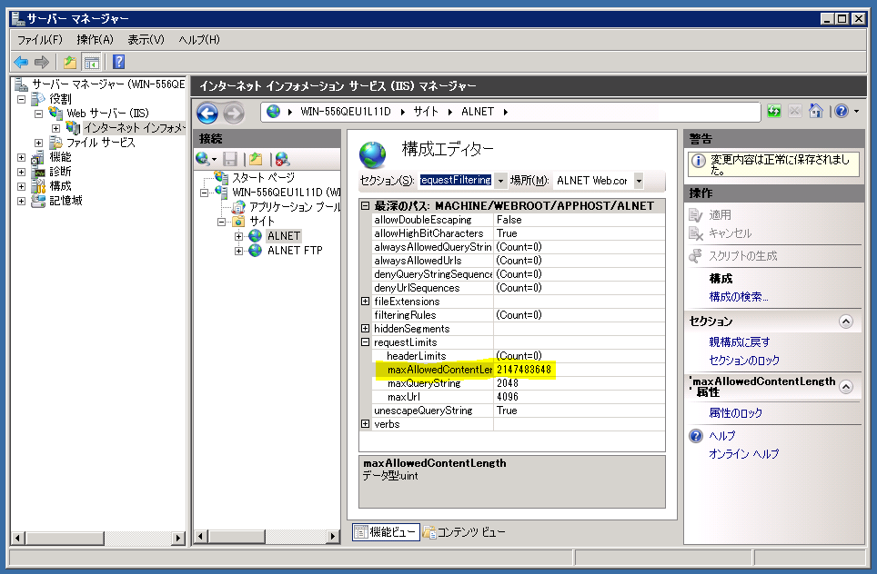 Image of IIS server manager